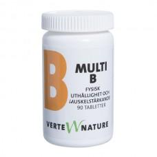 瑞典进口商品 MULTI_B